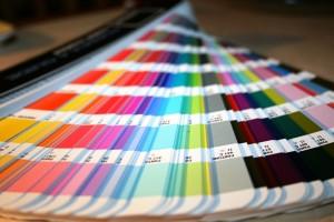 Nesweek 300x200 Wszystkie kolory świata!