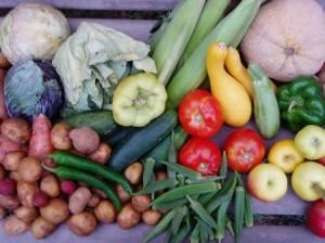 zywnosc ekologiczna 300x224 Jedz zdrowo!