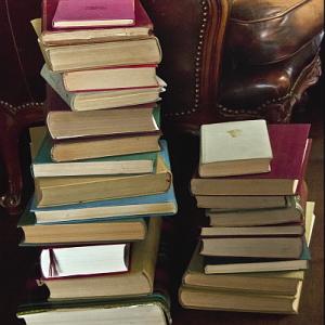 drabina full 300x300 Drabina – lista przebojów książek z 2011 roku!