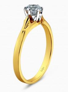 Briju Crisscut B0319 5 019 00 zl 221x300 Crisscut – unikatowy szlif diamentu
