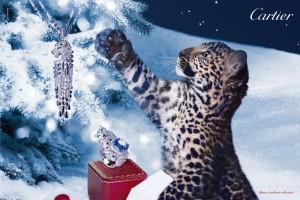 Winter tale Cartier 300x200 Cartier   zimowa kampania reklamowa