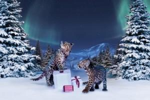 cartier holiday 2012 campaign 3 300x200 Cartier   zimowa kampania reklamowa