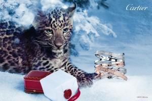 cartier holiday 2012 campaign 7 300x200 Cartier   zimowa kampania reklamowa