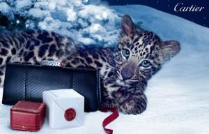 mini12 300x192 Cartier   zimowa kampania reklamowa