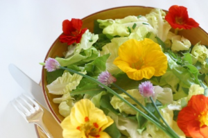 salatka wege flower.jpg 300x199 Jadalne kwiaty