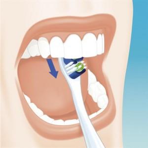thumb8075121 300x300 Szczotkowanie zębów