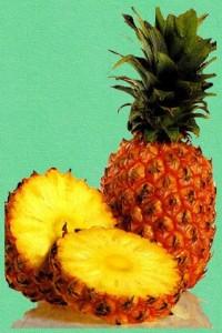 gdfgdfgdfgdfgfdgggggg 200x300 Ananasowe źródło urody